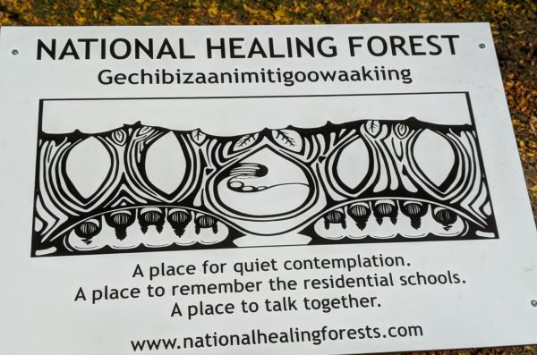 National Healing Forest